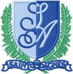 St Agnes RC Primary School (LINK)