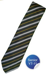 Tempest House Tie - Silver Stripe - for Durham High School