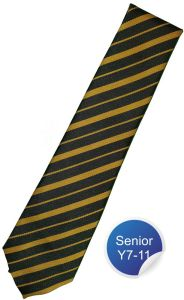 Heath House Tie - Yellow Stripe - for Durham High School