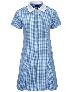 Blue Gingham Dress for School (Plain/No Logo)