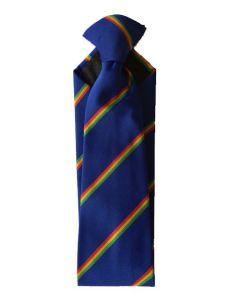 Clip on School Tie - for Astley High School
