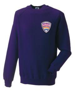 Purple Sweatshirt Crew Neck - With Denbigh PS Logo