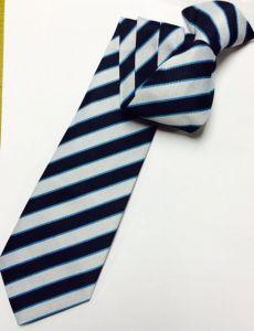 George Stephenson High School - Tie