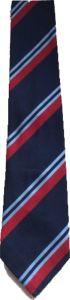 Standard School Tie for Gosforth Central Middle School