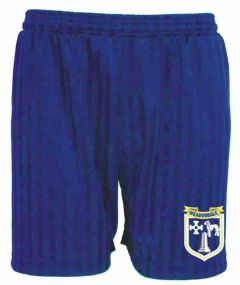 Royal PE Shorts Shadow Stripe - with embroidered Meadowdale Academy logo