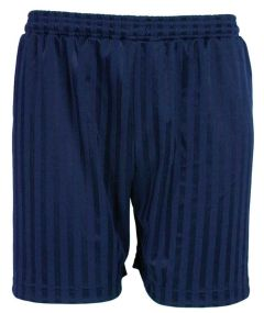 Navy PE Shorts Shadow Stripe