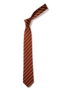 Wellfield Middle School Tie