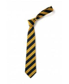 School Tie for Whytrig Middle School